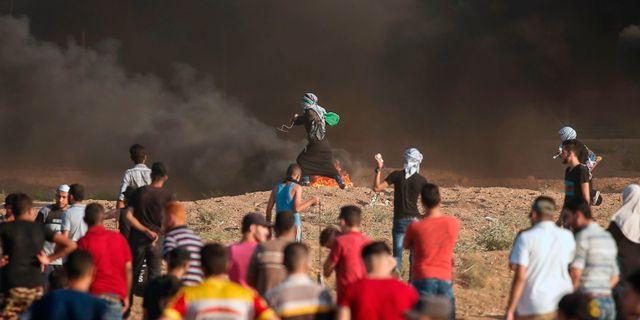 Bild från dagen. MAHMUD HAMS / AFP