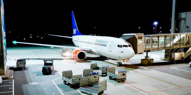 Illustrationsbild på SAS-flygplan av typen Boeing 737 – dock ej samma modell som åsyftas i artikeln. Johansen, Erik / TT NYHETSBYRÅN