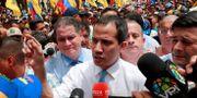 Juan Guaidó. Carlos Jasso / TT NYHETSBYRÅN