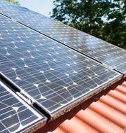 Solenergi.  Fredrik Sandberg/TT / TT NYHETSBYRÅN