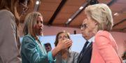 Flera höga EU-politiker, däribland Federica Mogherini (tvåa från vänster) under dagens möte i Wien. ALEX HALADA / AFP