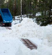 Bild från Vasaloppsspåret i Hökberg den 15 januari. Arkivbild. Ulf Palm/TT / TT NYHETSBYRÅN
