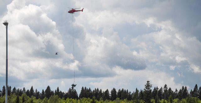 Helikopter bärgar vrakdelar efter olyckan. Patrick Trägårdh/TT / TT NYHETSBYRÅN