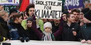 Greta Thunberg klimatstrejkar i Hamburg. Christian Charisius / TT NYHETSBYRÅN