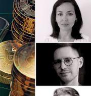 Gina Pari, Totte Löfström och Johan Javeus. Shutterstock & pressbilder