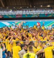 Fotbollsfans i St Petersburg/strand i Barcelona/Illustrationsbilder TT