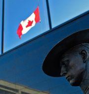 Flaggor vajar på halv stång i Kanada i dag. TIM KROCHAK / TT NYHETSBYRÅN
