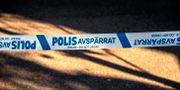Arkivbild.  Anders Wiklund/TT / TT NYHETSBYRÅN