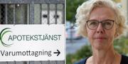 Lena Björk, chef för tillsynen på Läkemedelsverket. TT / Pressbild Läkemedelsverket