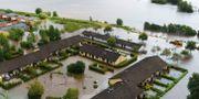 Flygbild över översvämningen vid Klockarevägen i Getinge med Suseån i bakgrunden, augusti 2014.  Anders Andersson / TT / TT NYHETSBYRÅN