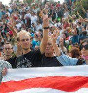 Demonstranter på lördagen. Dmitri Lovetsky / TT NYHETSBYRÅN