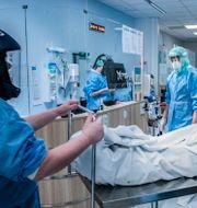 Sjukvårdspersonal i skyddskläder rullar iväg en patient. Staffan Löwstedt/SvD/TT / TT NYHETSBYRÅN