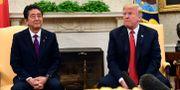 Shinzo Abe och Trump. Arkivbild. Susan Walsh / TT NYHETSBYRÅN/ NTB Scanpix