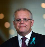 Australiens premiärminister Scott Morrison på pressträff om avslöjandet.  Mick Tsikas / TT NYHETSBYRÅN