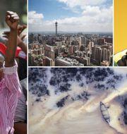 Kvinnor i Zimbabwe kräver att avsatte Robert Mugabe ställs inför riksrätt. Johannesburg. Cyril Ramaphosa. Oljeföroreningar i Nigeria. Arkivbilder. TT