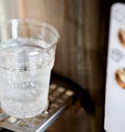 Plastmugg med vatten.  CHRISTINE OLSSON / TT / TT NYHETSBYRÅN