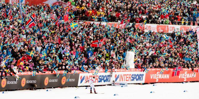 Charlotte Kalla framför ett publikhav på Lugnet under en tävling i februari 2015. NILS JAKOBSSON / BILDBYRÅN