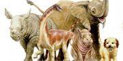 Konstnärs tolkning av en titanosauros som nyfödd i jämförelse med andra djurungar