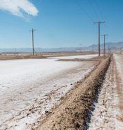Överblivet salt från litiumutvinningen kantar vägarna längs med Albemarles litiumgruva i Clayton Valley, USA:s hittills enda aktiva litiumgruva.  Anders Ahlgren/TT / TT NYHETSBYRÅN