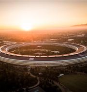 Apples högkvarter i Kalifornien.  Shutterstock
