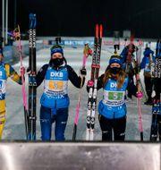 Det svenska laget. KALLE PARKKINEN / BILDBYRÅN