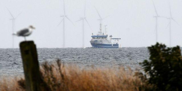 Forskningsfartyget Aurora på väg norrut i Kögebukten. Fartyget har använts vid dykningar och sökande efter Kim Walls kläder och kroppsdelar.  Johan Nilsson/TT / TT NYHETSBYRÅN