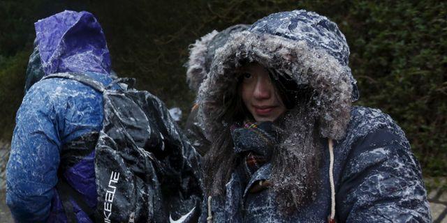 Vandrare på berget Tai Mo Shan BOBBY YIP / TT NYHETSBYRÅN