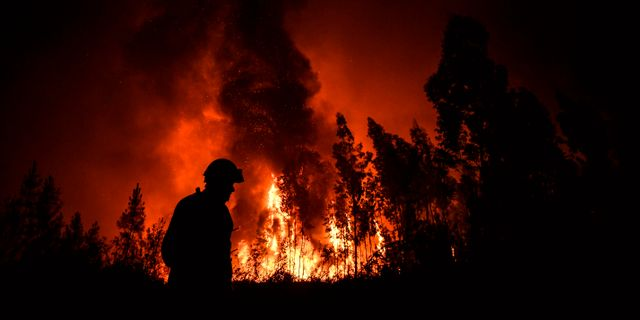Brandman i Portugal. PATRICIA DE MELO MOREIRA / AFP