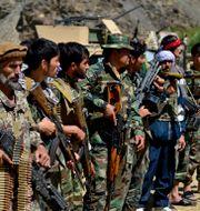 Motståndsrörelsen i Panjshir. Jalaluddin Sekandar / TT NYHETSBYRÅN