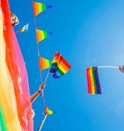 Illustrationsbild. Prideflaggor under parad i Oslo 2018. Solum, Stian Lysberg / TT NYHETSBYRÅN