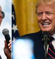 Biden och Trump. Arkivbilder. TT