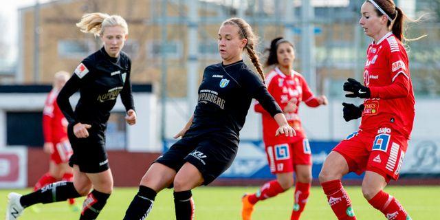 Kopparbergs/Göteborg och Linköping 2019.  NICKLAS ELMRIN / BILDBYRÅN