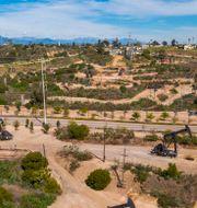 Oljefält söder om Los Angeles, i Kalifornien.  DAVID MCNEW / TT NYHETSBYRÅN