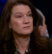 Ann Linde Skärmdump från SVT.