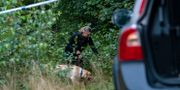 Polis söker med hund i området kring den plats utanför Markaryd där den 70-åriga man som varit anmäld försvunnen på lördagskvällen hittades död. Arkivbild. Johan Nilsson/TT / TT NYHETSBYRÅN