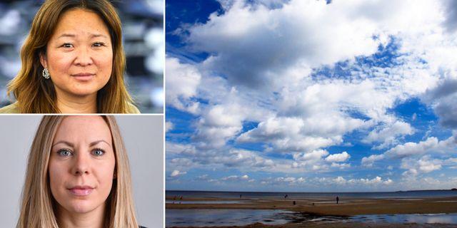 Jessica Polfjärd, Jessica Rosencrantz / Arkivbild Östersjön.  TT