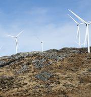 Vindkraft i Fitjars kommun i Norge. Jan Kåre Ness/TT