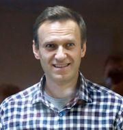 Aleksej Navalnyj i rätten på lördagen. Alexander Zemlianichenko / TT NYHETSBYRÅN