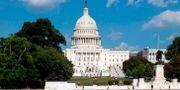 Arkivbild på Washington DC.  ALASTAIR PIKE / AFP