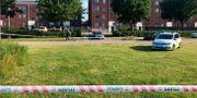 Bild från där skjutningen i Herlev ägde rum i juni i år. Arkivbild. Mathias Øgendal / TT NYHETSBYRÅN