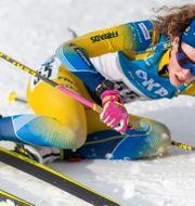 Hanna Öberg i snön efter målgång. JOEL MARKLUND / BILDBYRÅN