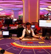 En croupier sitter vid ett baccaratbord i ett av Macaos kasinon.  Kin Cheung / TT NYHETSBYRÅN