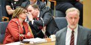 Isabella Lövin (MP) och Stefan Löfven (S) Janerik Henriksson/TT / TT NYHETSBYRÅN