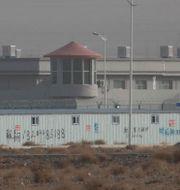 Vakter och staket omringar Xinjiang.  Ng Han Guan / TT NYHETSBYRÅN