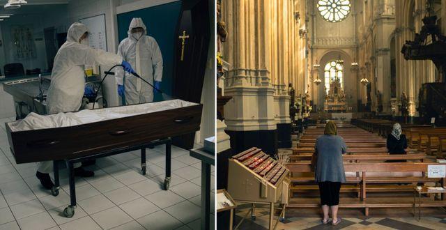 Kista desinficeras i Belgien/kvinna i kyrka TT