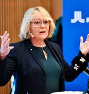 Irene Svenonius. Arkivbild. Anders Wiklund/TT / TT NYHETSBYRÅN