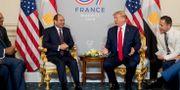 Al Sisi och Donald Trump. Andrew Harnik / TT NYHETSBYRÅN