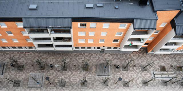 Bild från ett bostadsområde i Tensta i Stockholm. ALI LORESTANI/TT / TT NYHETSBYRÅN
