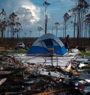 Bild från Grand Bahama.  Ramon Espinosa / TT NYHETSBYRÅN