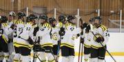 Männen i den svenska elithockeyn tjänar i snitt mer än ett helt lag på damsidan. Christine Olsson/TT / TT NYHETSBYRÅN